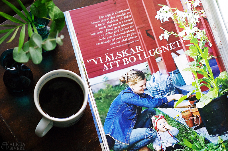 aliciasivert alicia sivert alicia sivertsson lantliv magasin magazine kaffe läsa höstmys reportage