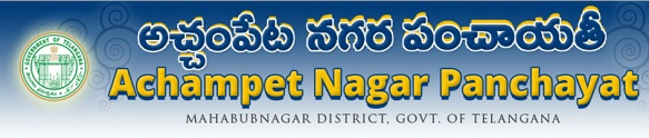 Achampet Nagar Panchayat Election 2016 Result