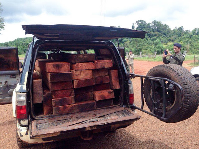 A forestry official takes a photo of a vehicle on Wednesday after it was seized for illegally transporting lumber in Mondulkiri. Photo supplied