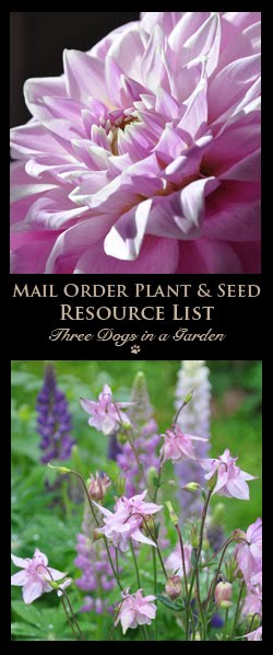 A List of 2019 Plant & Seed Catalogues!