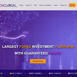 Rich Global Limited: обзор и отзывы о richglobal.trade (HYIP СКАМ)