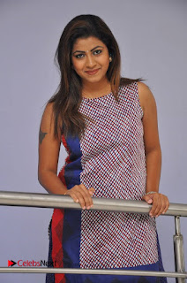 Telugu Actress Geethanjali Stills at Avanthika Movie Trailer Launch Event  0007.jpg
