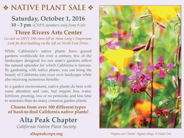 http://altapeakcnps.org/2016/09/09/native-plant-sale-on-October-1-2016