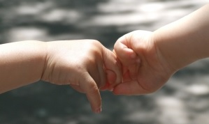 Image: Baby hands - hand by hand. Photo credit: Hajnalka Ardai  on FreeImages