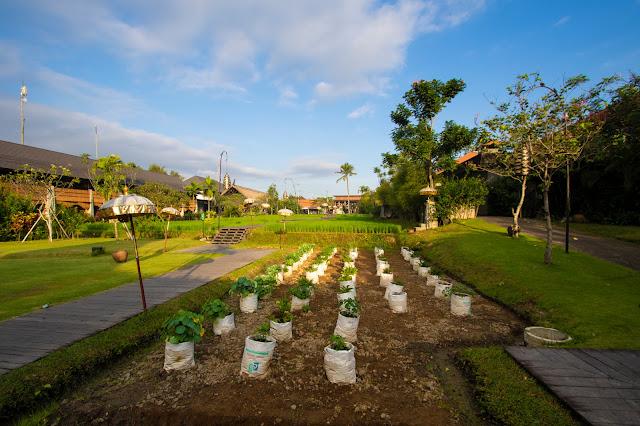 Alaya Ubud Resort, Ubud-Bali
