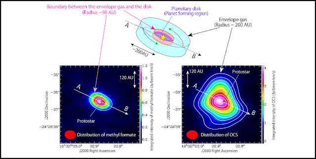 (Upper panel) A schematic illustration of the infalling gas around the protostar. A disk structure with a radius of about 50 AU exists around the protostar. The disk in turn is surrounded by an envelope of gas extended over a 200 AU scale. OCS exists in the envelope gas, while methyl formate mainly exists in the boundary area between the envelope gas and the disk structure.  (Lower left) Intensity distribution of methyl formate (HCOOCH3) observed with ALMA. A structure elongated along A-B can be seen centered on the position of the protostar. Methyl formate is located within 50 AU from the protostar. (Lower right) Intensity distribution of OCS (carbonyl sulfide) observed with ALMA. A structure elongated along A-B can be seen centered on the position of the protostar position, similar to the case of OCS. However the distribution of OCS (~200 AU) is more extended than that of methyl formate. Credit: ALMA (ESO/NAOJ/NRAO), Oya et al.