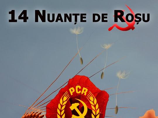 14 Nuante de Rosu - Writing & publishing in my mother tongue
