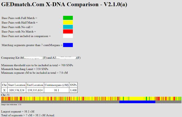 X-DNA chromosome browser