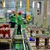 Schneider Resmikan Pabrik Perangkat LV dan MV Terbesar di Asia