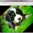 Rotating Images & Videos | OpenCV Tutorials