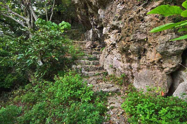rugged trail with stone stairs