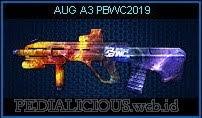 AUG A3 PBWC2019