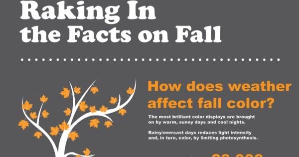 Innovation Design In Education - ASIDE: Autumnal