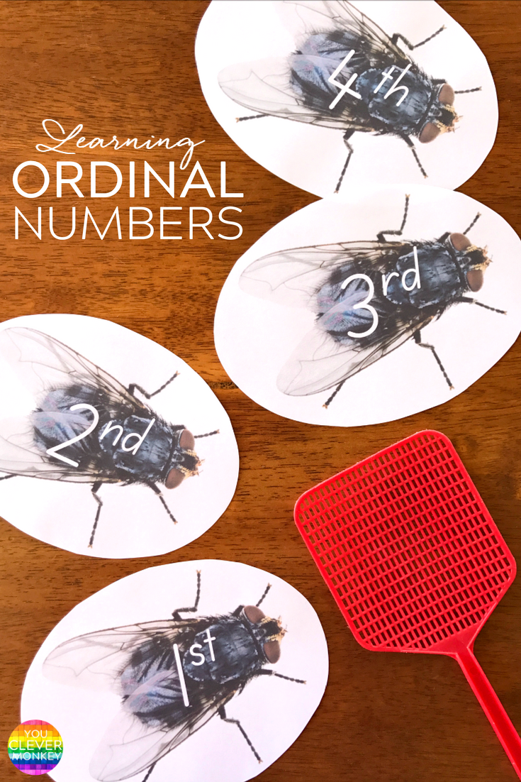 Making Learning Ordinal Numbers Fun - print out these ordinal number fly swat game cards to practice reading ordinal numbers | you clever monkey