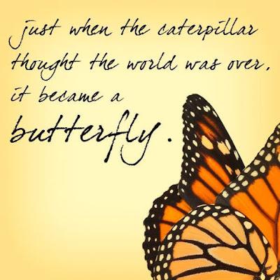 Beautiful Butterflies Quotes