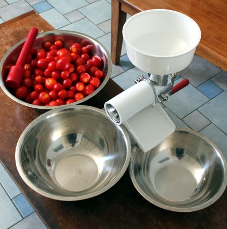 Tomato sauce showdown: Victorio strainer vs. immersion blender