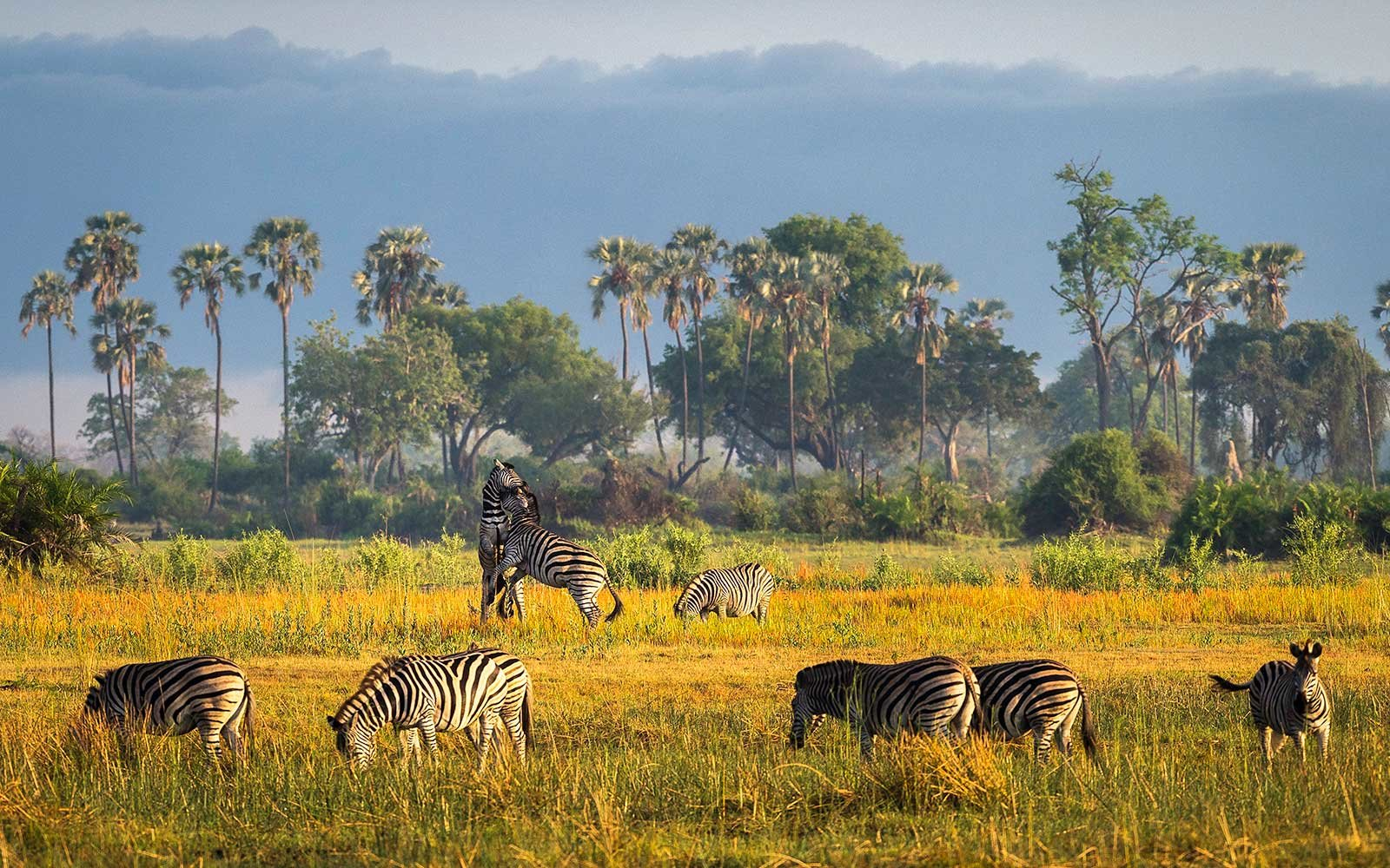 10 Places To Visit In Africa For A Thrilling Vacation 5