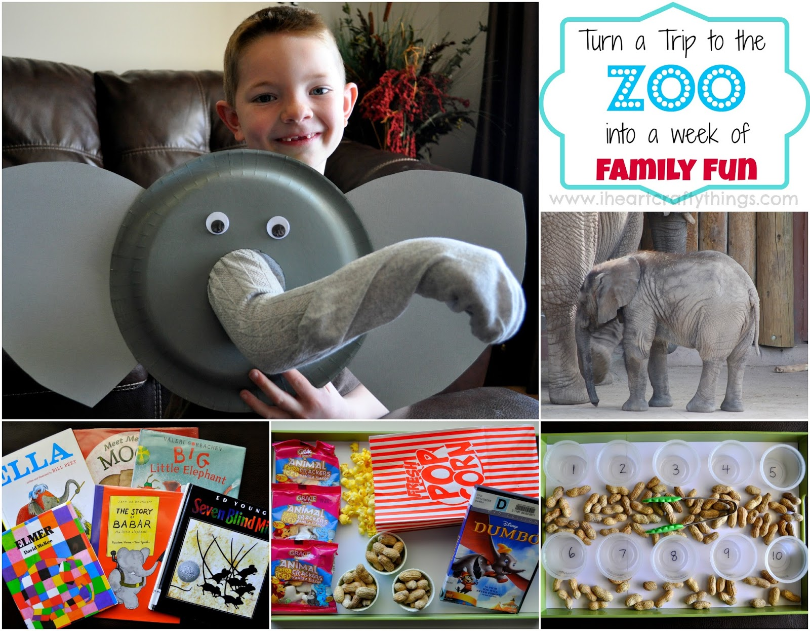 Zoo Family Activites For A Week