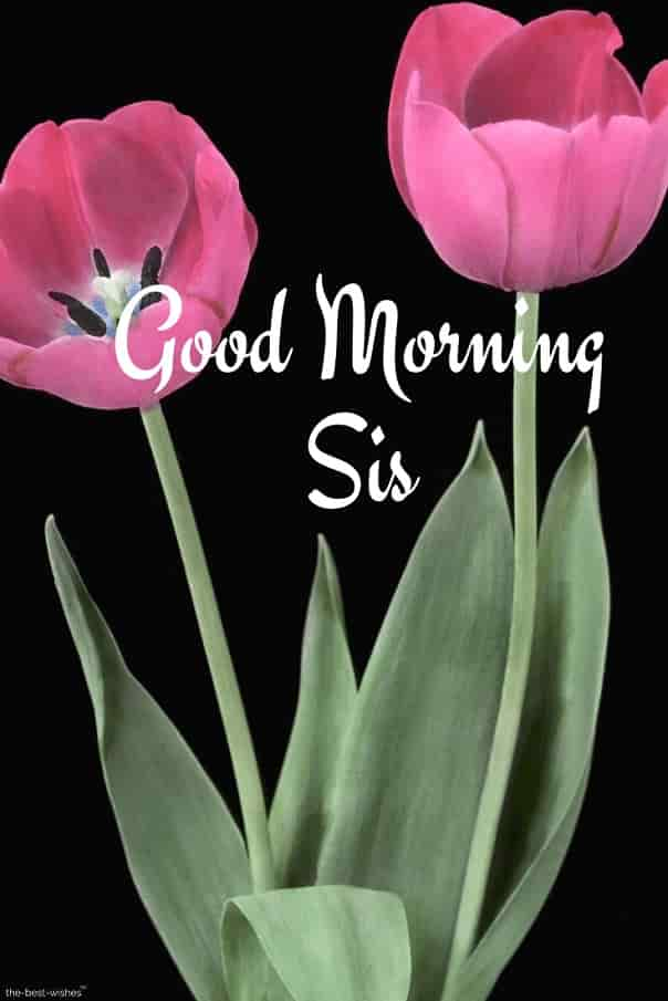 good morning sis hd pictures