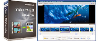 ThunderSoft Video to GIF Converter Portable