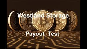 https://westlandstorage.com?p=153023