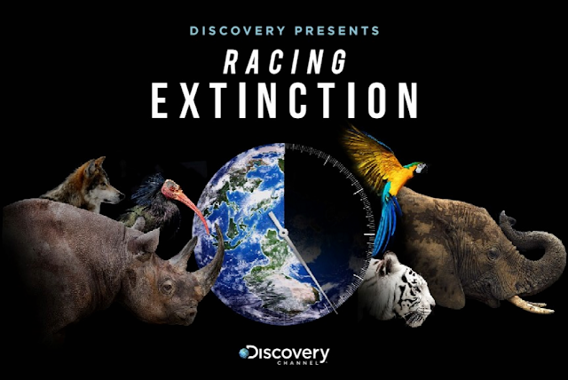 Racing Extincion, Misi Penyelamatan Satwa dan Lingkungan