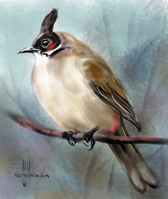 Red-whiskered bulbul bird painting by Artmagenta