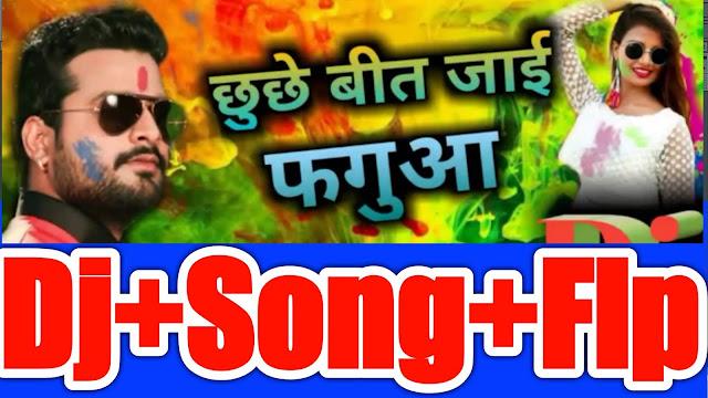 Ritesh Pandye Holi Dj song Flp Project