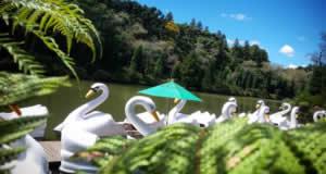 Lago Negro - (Black Lake) - Gramado, Rio Grande do Sul, Brazil