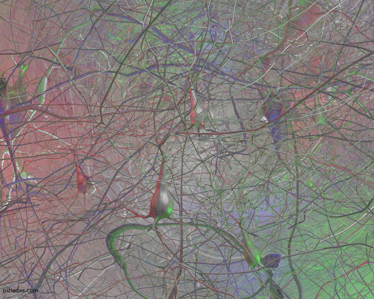 Violetas neuronas espejo en el cerebro humano for Lo espejo 0450 el bosque