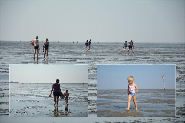 Dolna Saksonia - Morze Wattowe - Cuxhaven
