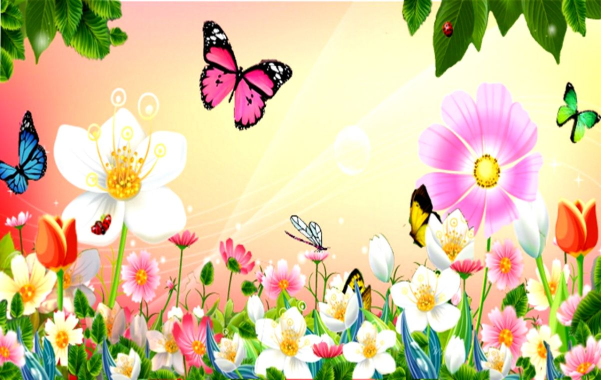 Spring Flowers And Butterflies Images Wallpapers Latest