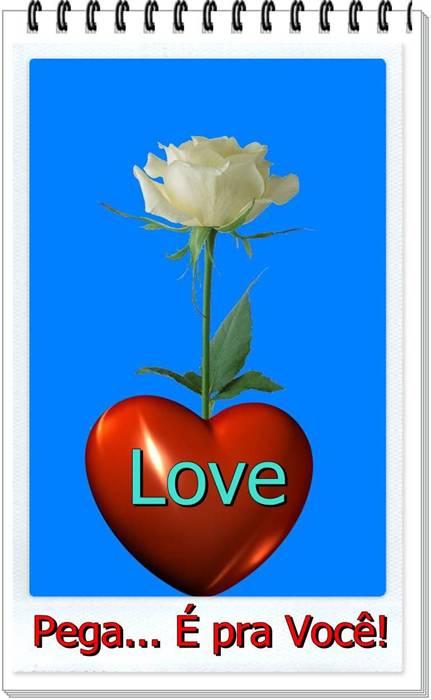Uma rosa para você, porque eu te amo!!!
