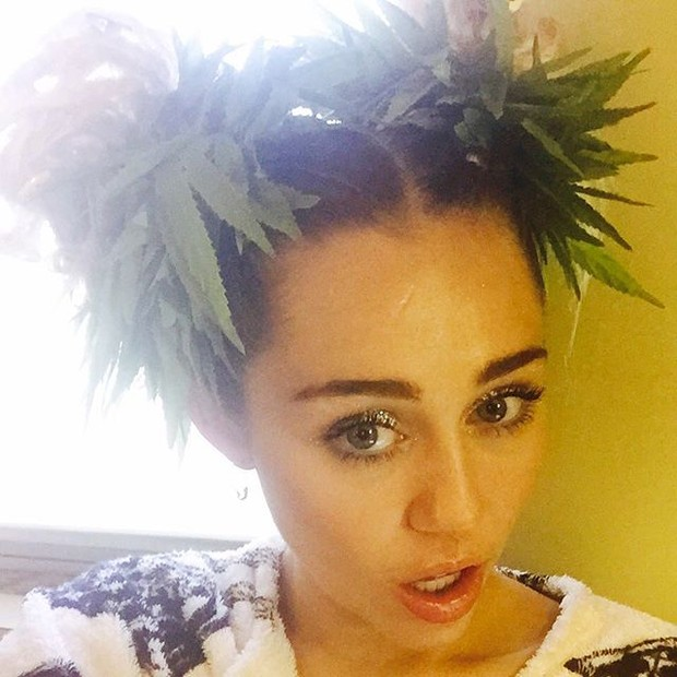 Miley Cyrus debates while posing with marijuana plants in the hair