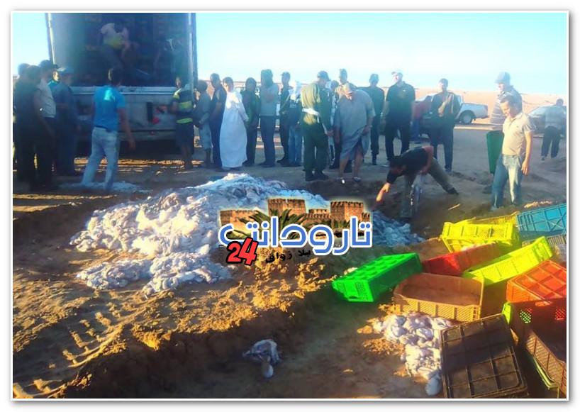 تارودانت24 _ بالصور : الدرك الملكي يحجز 500 صندوق من الأخطبوط المهرب