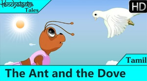 Panchatantra Tales – The Ant and The Dove – Moral Stories in Tamil for Kids