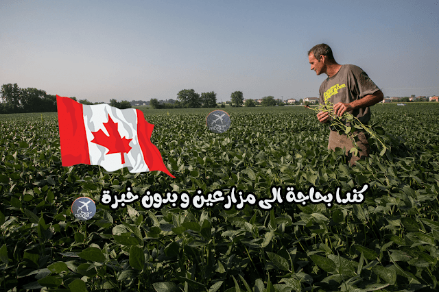 كندا بحاجة الى مزارعين و بدون خبرة مهنية - سجل الآن