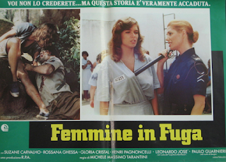 Femmine in fuga (1984)