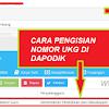 Admin Dapodikdasmen: Nomor UKG Harus Dimasukkan ke Aplikasi Dapodik
