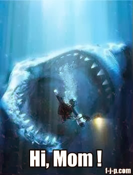 Funny Shark Diver Picture