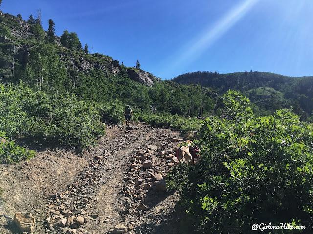 Backpacking the Shingle Creek Trail, Uintas