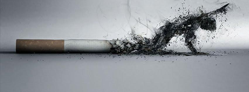 couverture sur un profil Facebook La Cigarette Tue