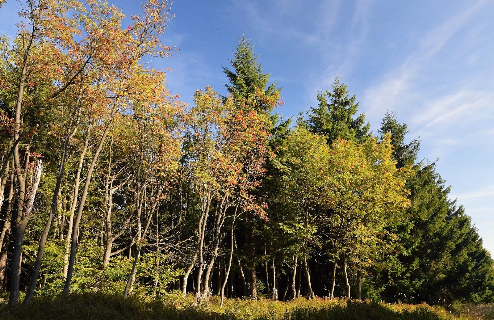 Wczesna jesień w Górach Orlickich