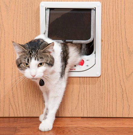 Magnetic Cat Flap