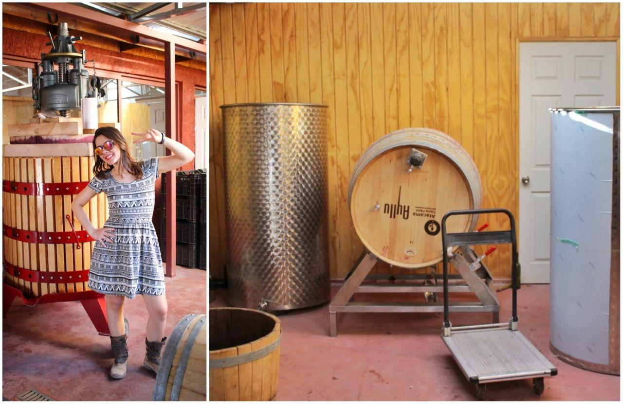 Produção de vinhos na Vinícola Santa Romina.