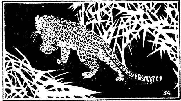 Illustration for Ethiopian Trails - January, 1936 issue of Blue Book magazine