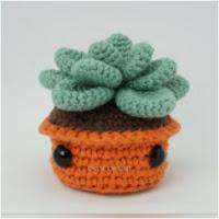 http://amigurumislandia.blogspot.com.ar/2019/03/amigurumi-planta-suculenta-canal-crochet.html