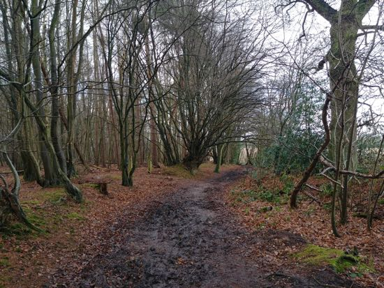 Image from Walk 12 The Welwyn Loop by Hertfordshire Walker and released under Creative Commons