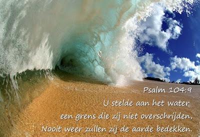 Leef je geloof: De lente getuigt van Gods geduld, Hillie Snoeijer