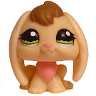 Littlest Pet Shop Carry Case Rabbit (#1167) Pet
